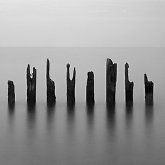 Eight Posts (Adam Clutterbuck) Tags: ocean uk greatbritain sea england blackandwhite bw seascape 20d beach monochrome square landscape mono coast blackwhite canoneos20d bn minimal coastal shore elements worn gb poles bandw posts simple sq groyne eastsussex limitededition winchelsea eroded distilled simplified greengage adamclutterbuck sqbw bwsq showinrecentset shortedition le50 limitededition50