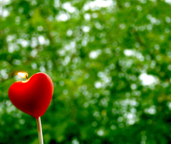 unbelievable (FUNKYAH) Tags: red tree green love canon fire candle heart burning flame burn 400d
