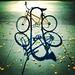 Autumn Cycle - by moriza