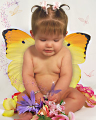 baby butterfly (marisa_johnson79) Tags: babies