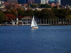 Sailing on the Charles in Boston (North Central Photography) Tags: ocean water boston river boat sailing charles transportation sail