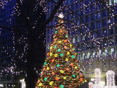 Chicago: Daley Plaza Christmas Tree (2006) (laffy4k) Tags: christmas november holiday chicago tree public festive illinois december 2006 christmastree christmasdecorations happyholidays merrychristmas downtownchicago chicagoland chicagoillinois daleyplaza christkindlmarket 5000views germanchristmasmarket chicagochristmasmarket giantchristmastree winter2006 november252006 daleyplazachristmastree chicagochristmastree publicchristmastree saturdayafterthanksgiving outsidechristmastree