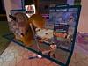 Second Life BB 46 (Gary Hayes) Tags: secondlife bigbrother housemates xmastree challenges endemol muve environmentdesign virtualrealitytv tvformat