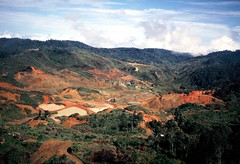 Edie Creek (Mangiwau) Tags: new creek island gold guinea pacific south jungle mineral png papua exploration edie hagen investment drill drilling portmoresby rabaul wau madang goroka pacifique lae guinee oceanie alotau morobe papouasie papouasienouvelleguinee bulolo kainantu biangai nouvelleguinee