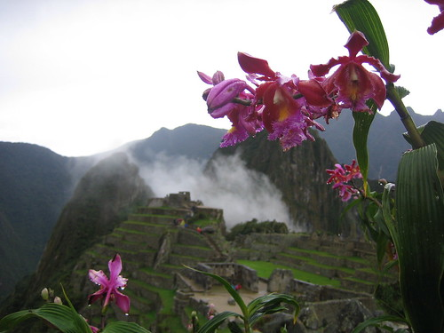 Machu Picchu, the nature reserve