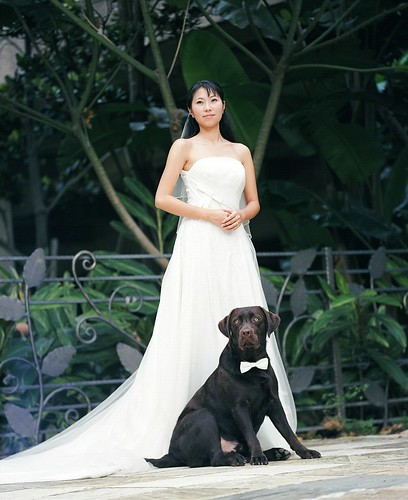 Wedding Portrait 12