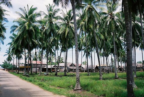 Muslim Bugis stilt house community