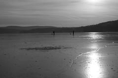 Ice fishing (Domrus) Tags: icefishing fishing adirondacks blackandwhite