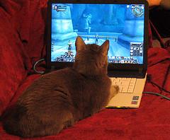 mmorpg apprendere giochi elettronici online