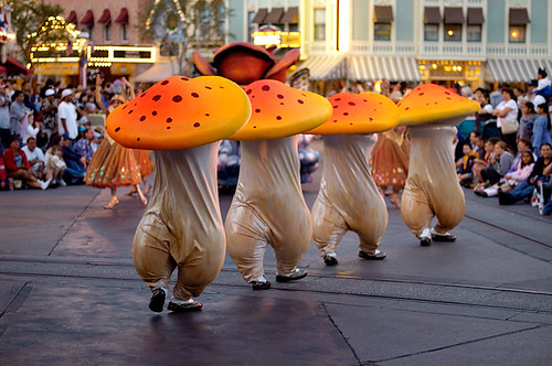 Dancing Mushrooms