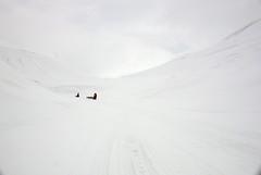 Endalen (Ti.mo) Tags: norway svalbard spitsbergen snowscooter snow white whiteout valley landscape people endalen snowblindness blindness blind huskies