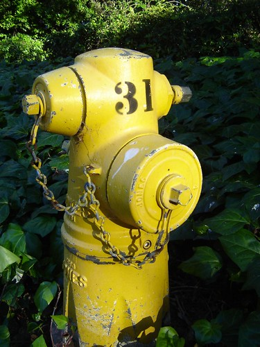 Fire hydrant 31
