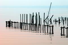 Sunken Sailboat (eye2eye) Tags: stjohnsriver orangepark florida 2004 dawn dock docks mast