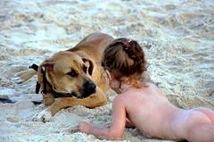 """can we be friends?"" (ido1) Tags: friends sea dog eye beach look topv111 israel eyes topv555 topv333 saveme3 deleteme10 topv999 uninteresting utatafeature"