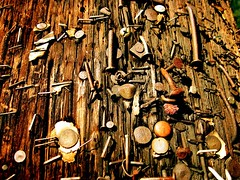 Years Later; Messages Lost To Time. (joaobambu) Tags: 2005 wood old urban stilllife macro topv111 georgia interestingness interesting topv333 rust published picasa2 decay edited urbandecay nail sixwordstory rusty picasa pole nails decatur weathered aged mutedcolors staples tacks top25 nailed
