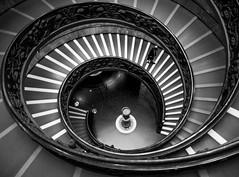 Museum at Vatican (balintmolnar1) Tags: rome beautiful streetphotograhpy lumixgh4 gh4 canon colosseum pinokio fountain river fruits guard sunset stairs bnwphotography motor vespa reflection