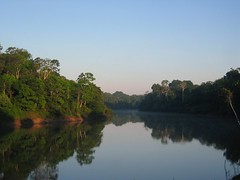 Morning in the Amazon... - by markg6