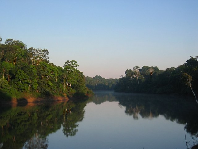 Morning in the Amazon...