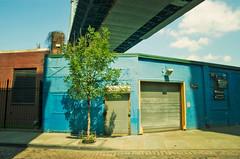 Empty: DUMBO (moriza) Tags: city nyc shadow newyork tree brooklyn empty dumbo overpass sunny mo sidewalk manhattanbridge mohammad moriza riza modomatic