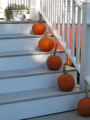 Stepping Up (Bluepeony) Tags: autumn orange brown white fall halloween stairs pumpkin october pumpkins decoration harvest fv5 september goosed pumpkinpatch vf10 asymetrya theworldthroughmyeyes twtme whatthegardengrows