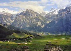 Grindelwald (Alon_A) Tags: snow alps green nature switzerland high view hiking swiss hike scanned grindelwald berner mountines bernese swissalps berneroberland berneseoberland oberland alpines specland fiveflickrfavs