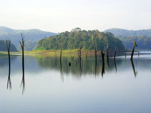 Thekkady, Periyar Wildlife Sanctuary