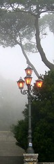 The autumn in a bookmark (menteblu61) Tags: light lamp fog sicily lampioni erice interestingness410 i500 homeworkmesediottobre2006menteblu61 menteblu61