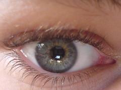 Auge (Bugl) Tags: cameraphone auge bugl