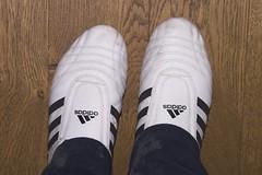 Adidas trainers (ChrisBrookesPhotography.co.uk) Tags: uk chris photography wooden oak floor trainers taekwondo brookes adidias scoopt cbrookes75 chrisbrookes httpwwwchrisbrookesphotographycouk