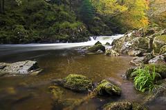 Autumn Llugwy (Stu Worrall Photography) Tags: autumn trees wales forest river flow waterfall north betwsycoed creak afon llugwy stuworrall stuartworrall