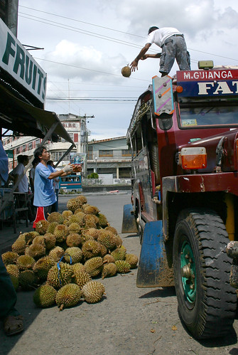 Pinoy Filipino Pilipino Buhay  people pictures photos life Philippines,Davao City  fruit, jeepney, man, rural, scene, street, transport, durian unloading