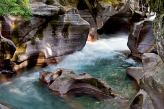 Avalanche Creek (Bev and Steve) Tags: park water creek wow bravo montana glacier national getty waterblur accept submit avalanche spectacularlandscape specnature myexplore abigfave aug0607601