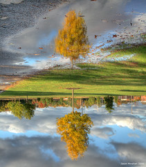 Surreal Reflection (jason_minahan) Tags: reflection fall newjersey nj princeton hdr mercercounty xti