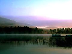 Morning breaks - by Lida Rose