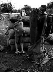 charcoal kids (janchan) Tags: poverty africa camp portrait people kids work children bambini retrato refugee refugees documentary ghana charcoal coal liberia ritratto reportage povert lavoro pobreza refugeecamp carbone buduburam childwork lavorominorile whitetaraproductions
