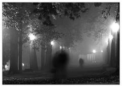 presence in the fog (ozio-bao) Tags: black fall fog ghost lucca presence biancoenero bigmomma challengeyouwinner oziobao