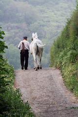 The Long Walk Home (. Andrew Dunn .) Tags: people espaa horse man topf25 walking andaluca spain