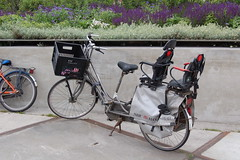 Moederfiets (livewombat) Tags: bike fiets citybike moederfiets