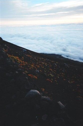 05660015 Fuji Peace