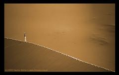 Dunes of Merzouga (Sahara, South Morocco) (Nestor Botta) Tags: orange sahara landscape desert dunes small paisaje arena morocco desierto sands marruecos naranja pequeo dunas anaranjado merzouga moonlikelandscape nestorbotta