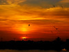 Tonight's Sunset  --  Sunday, December 3, 2006