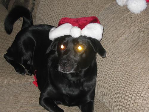 Santa or Satan?