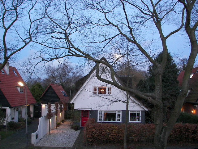 Kijk de maan schijnt do-o-or de bomen ...