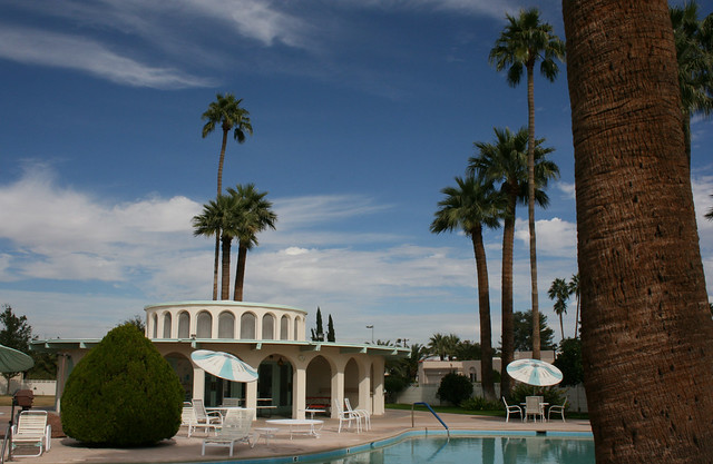 Palm Trees and Cactus, Scottsdale Pool