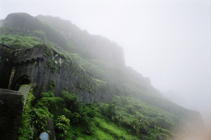 gaurav singh tomar