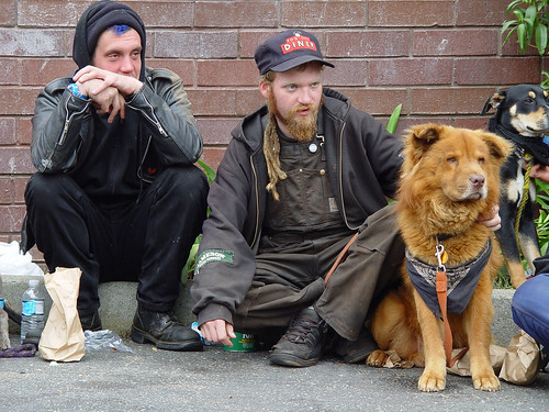 men sitting on the sidewalk, panhandling with their dogs
