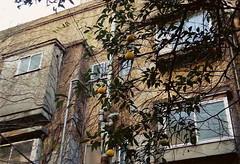 non existence (gracias!) Tags: winter film japan architecture tokyo apartment pentax aoyama omotesando mz5 表参道 dojunkaiapartment 同潤会青山アパート