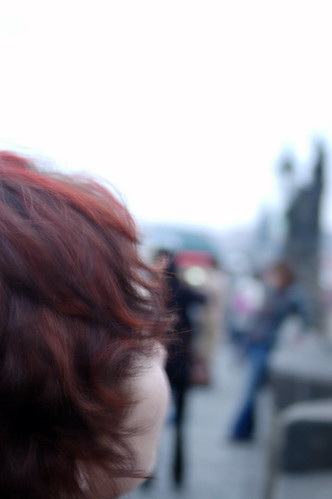 Artsy Shot of Charles Bridge