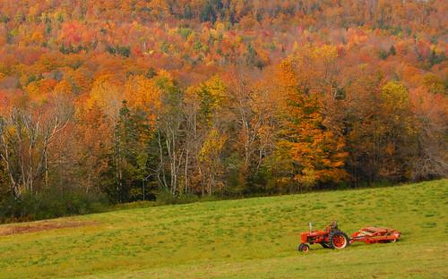 rolnik na emeryturze
