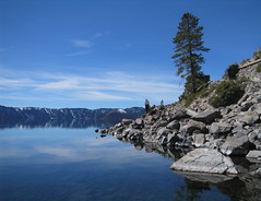 Tree, Rocks, Crater Lake (Ryan Hadley) Tags: blue trees cliff usa lake mountains nature clouds oregon landscape island nationalpark rocks hiking rockface crater caldera cascades craterlake alpinelake wizardisland cascademountains craterlakenationalpark cleetwoodcove anawesomeshot southcascades
